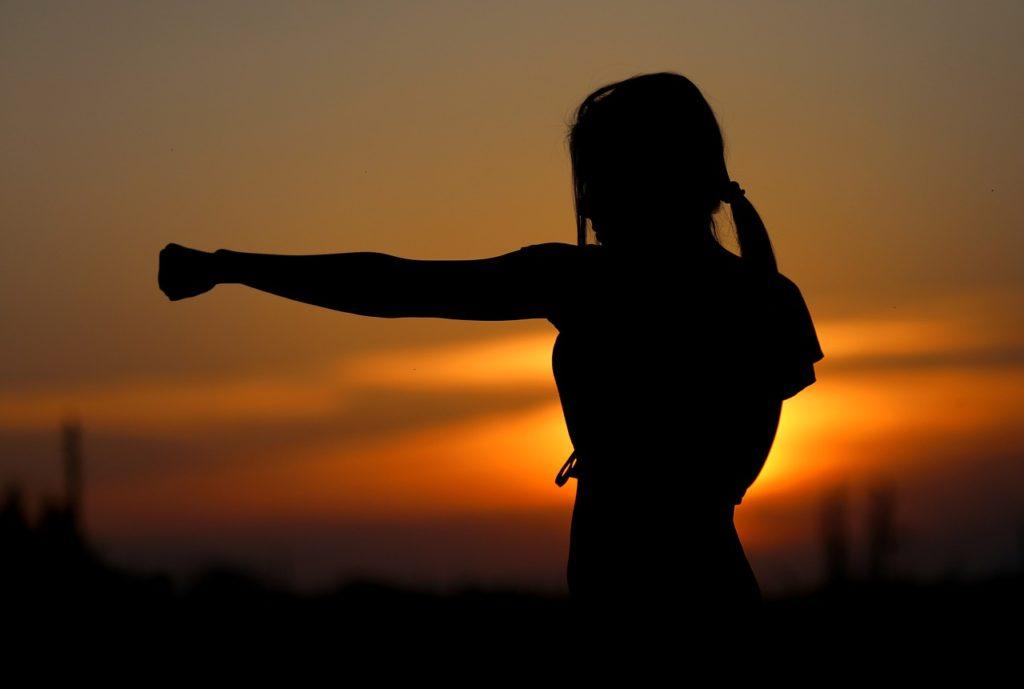 karate, sunset, fight