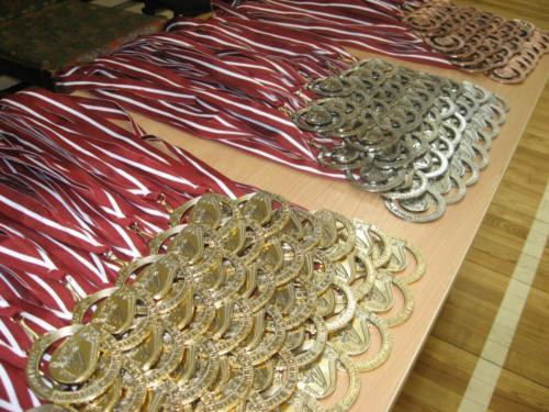 Open Karate Championship - Jelgava 2013
